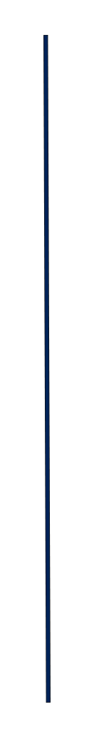 The Big Give Slider (Blue Line).png
