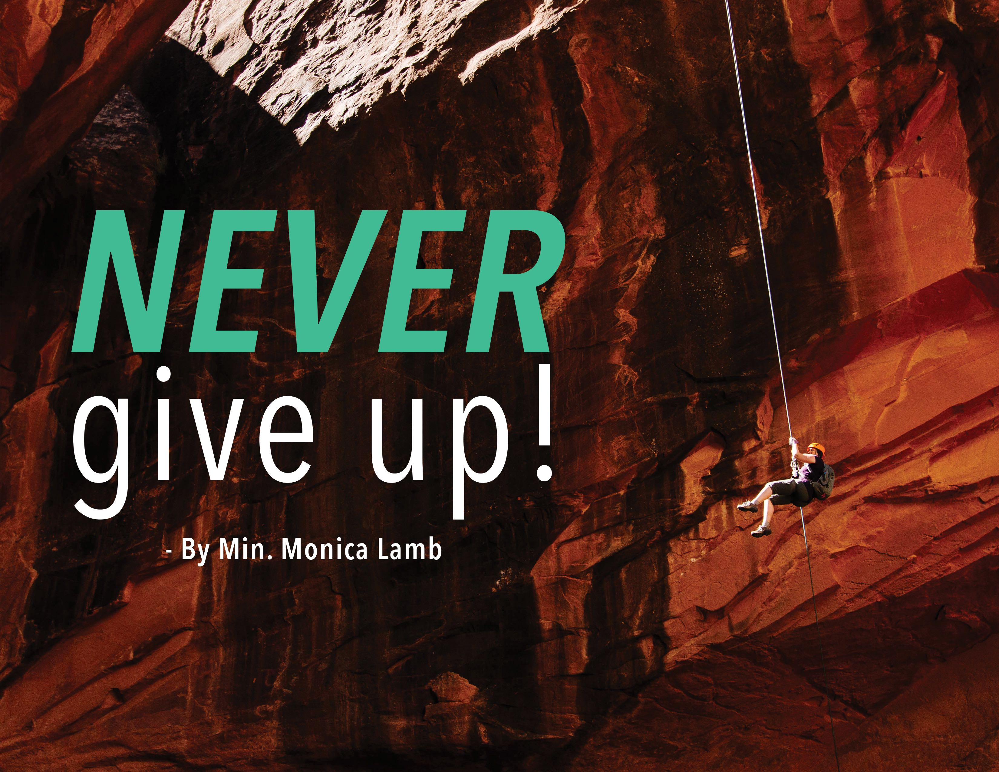 Leadership Insight - Never Give Up!
